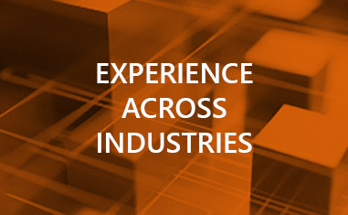 Comprehensive Industry Experience