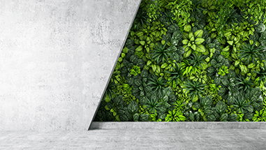 concrete_wall_half_plants_rev_featured